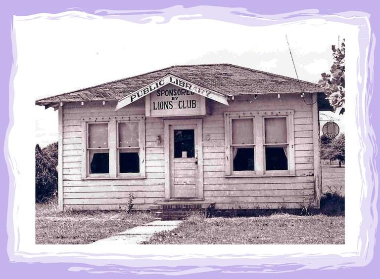 Lion's Park library