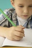 Reading boy with homework